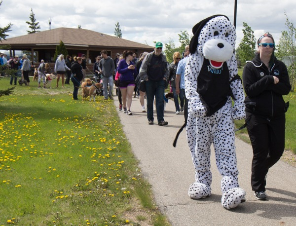Walk-for-Dog-Guides